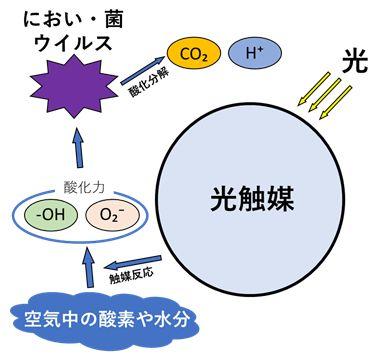 光触媒/機能模式図
